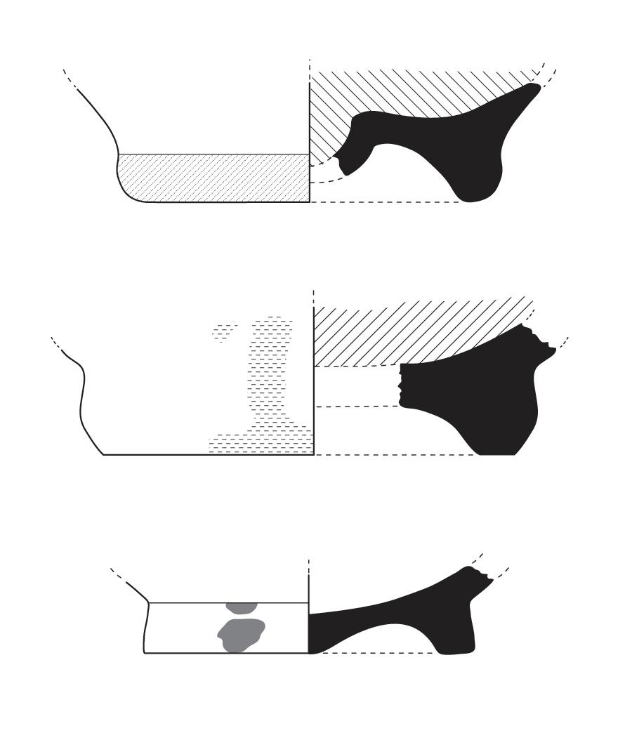 Vessel Profiles  Adobe Illustrator