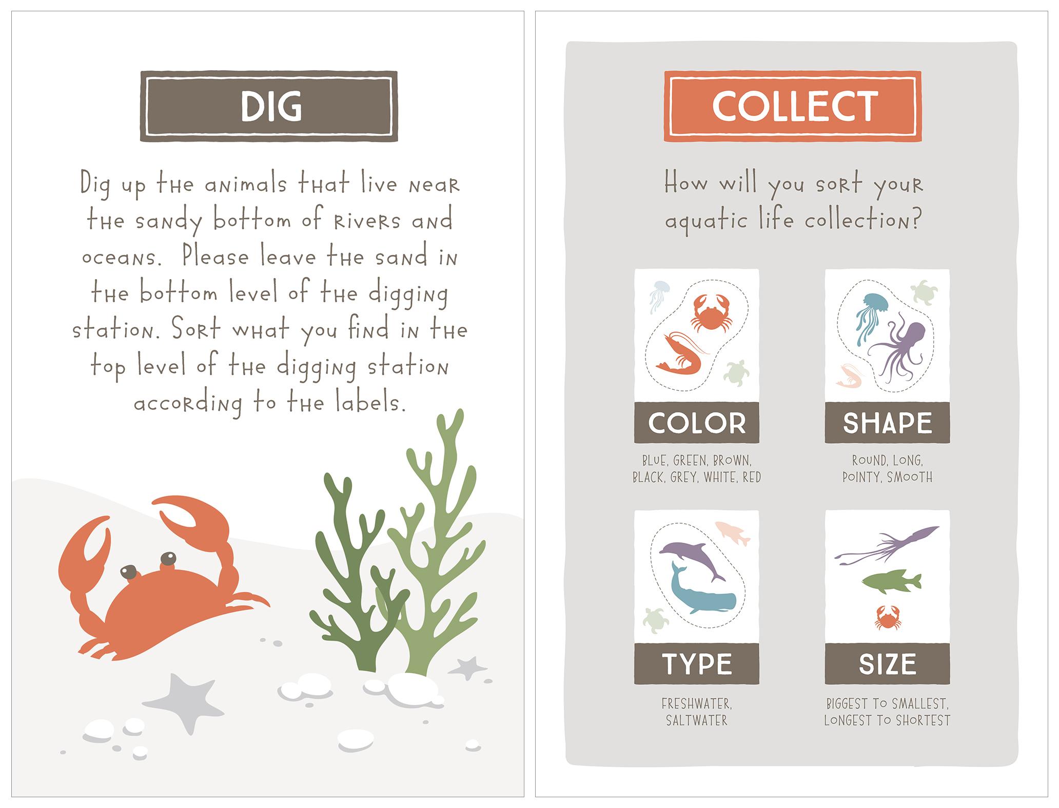 Instructional Signs  University of Colorado Natural History Museum Adobe Illustrator