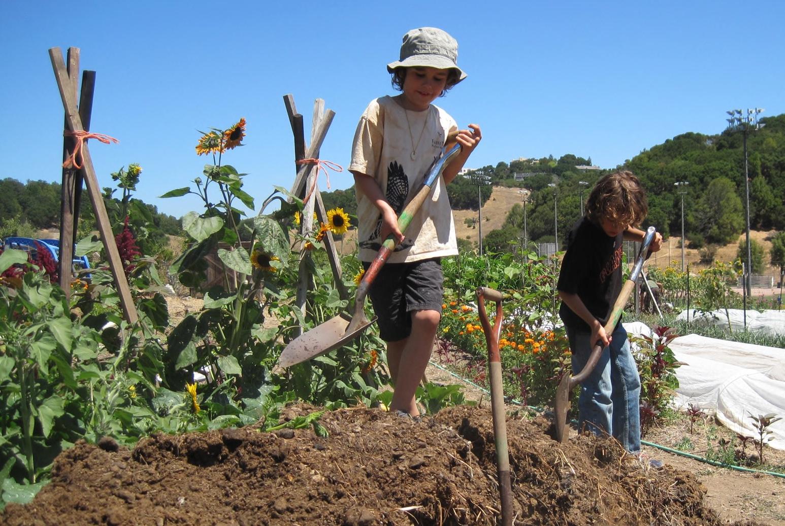 Garden Kids.jpg
