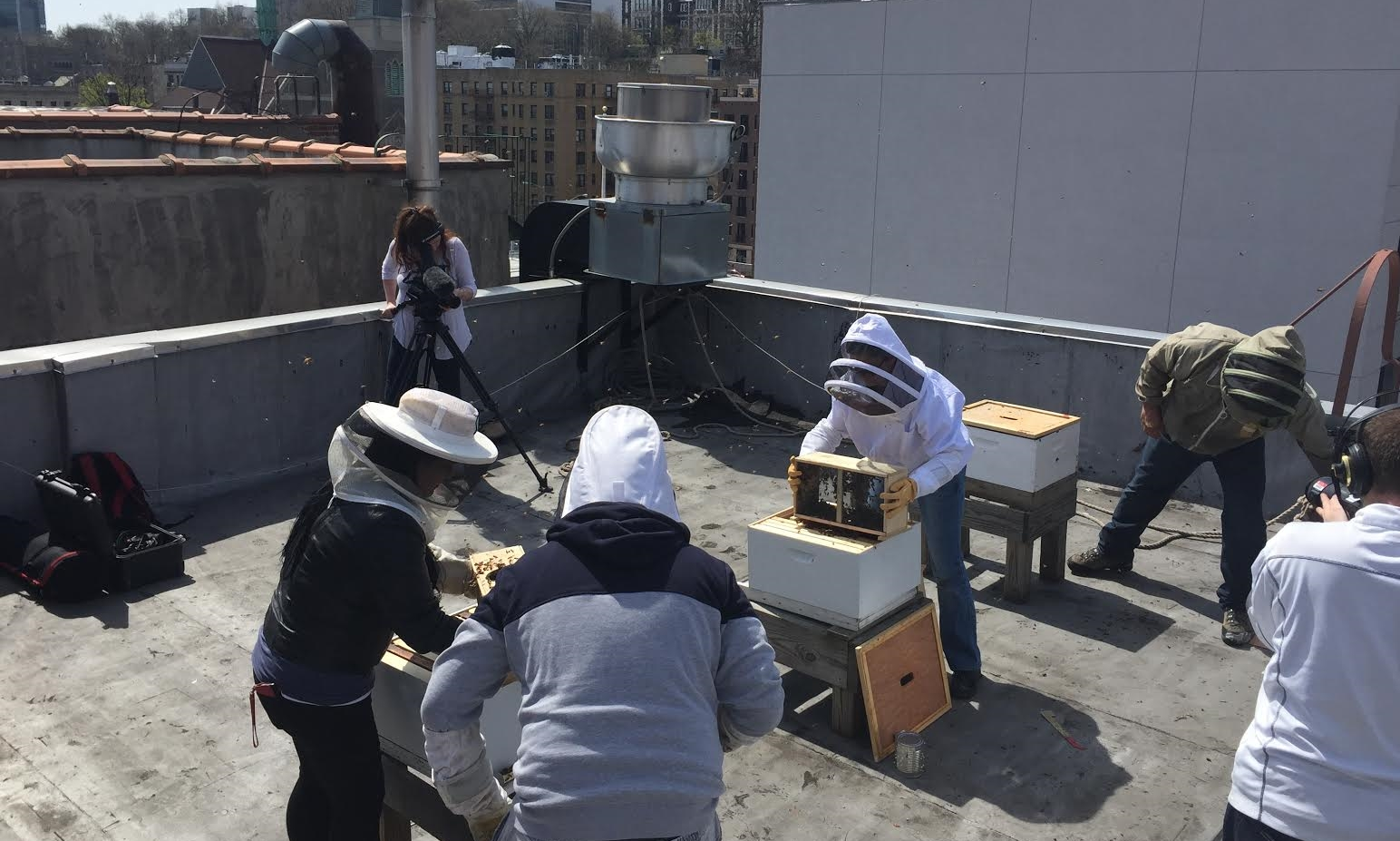 Apprentices installing new packages of bees at a Harlem rooftop apiary.