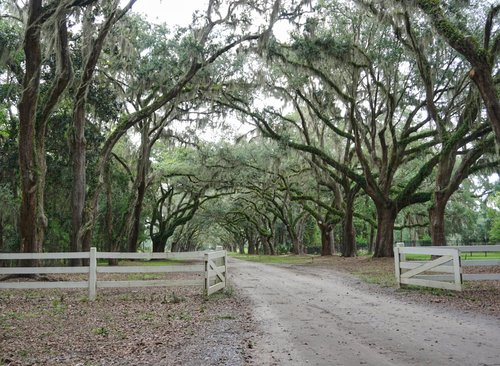Savannah: The Ultimate Girls Weekend -