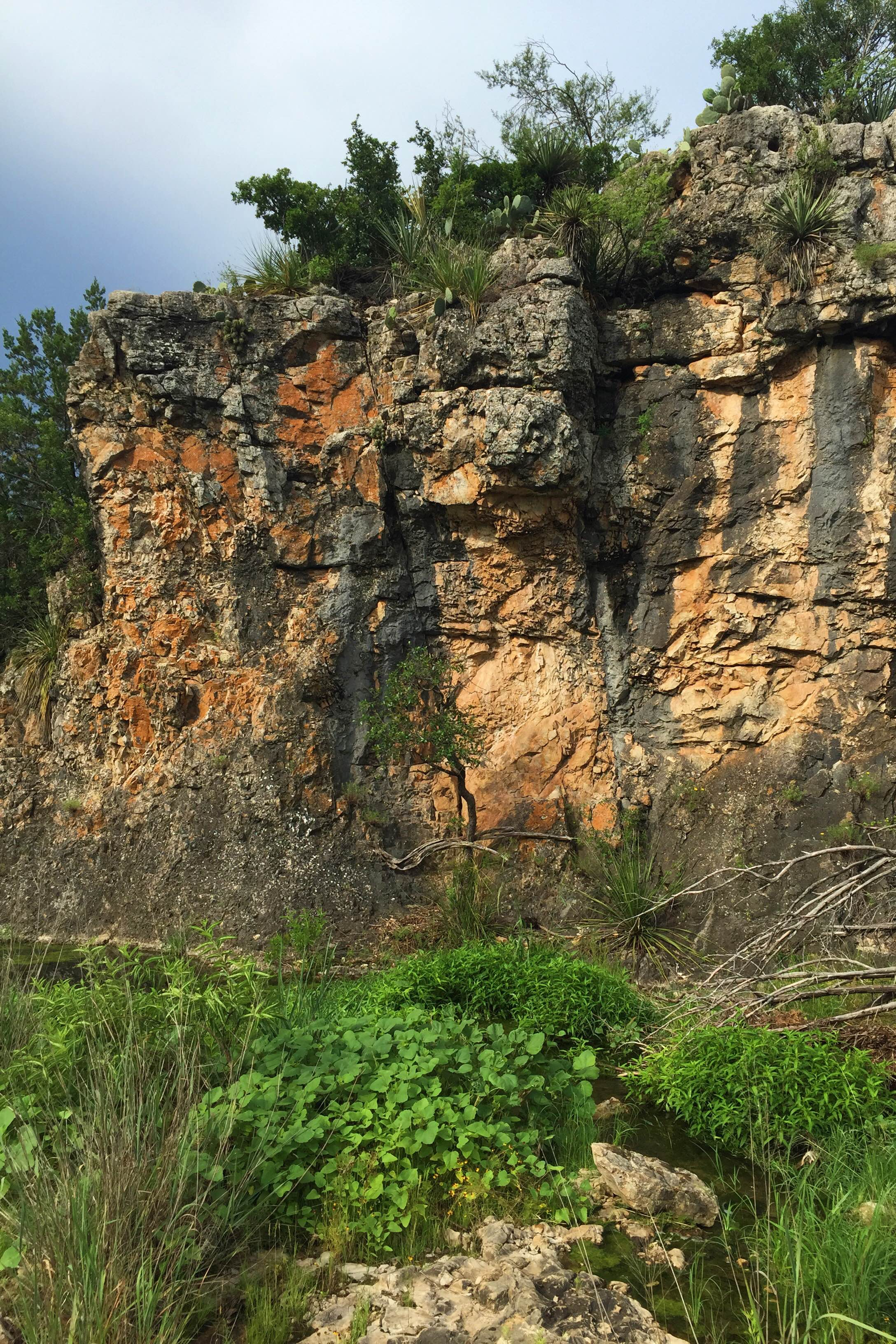 Limestone outcropping with a spring in the foreground.