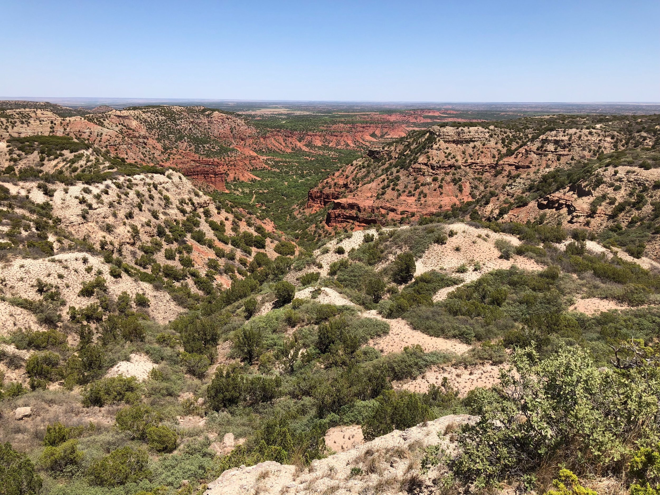 Caprock Canyon looking east from Haynes Ridge