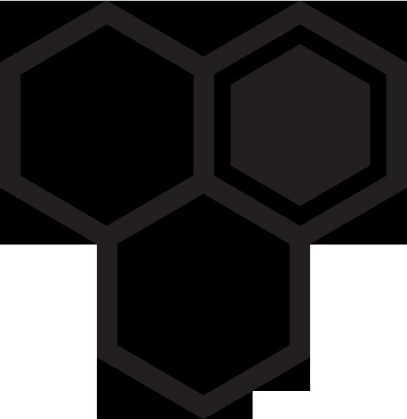 cds logo.png