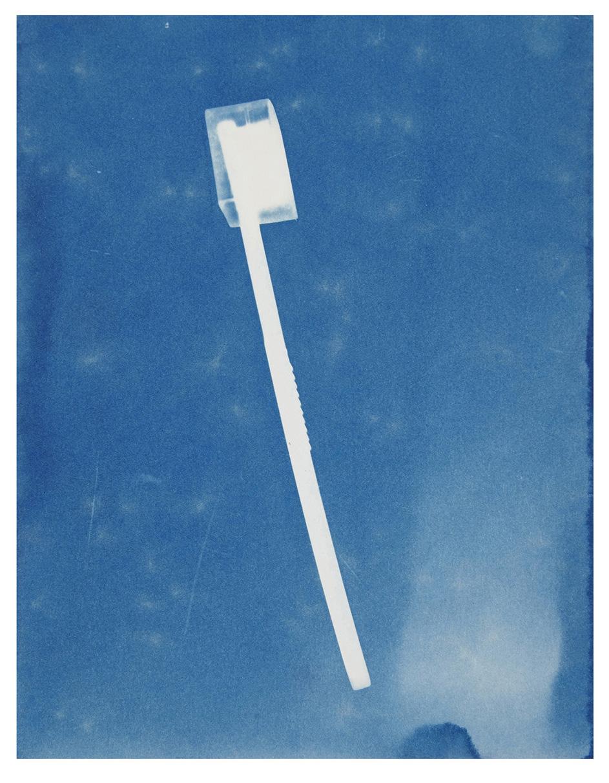 Jessie Brennan 'Toothbrush', cyanotype,  Inside The Green Backyard (Opportunity Area) , 2015-16