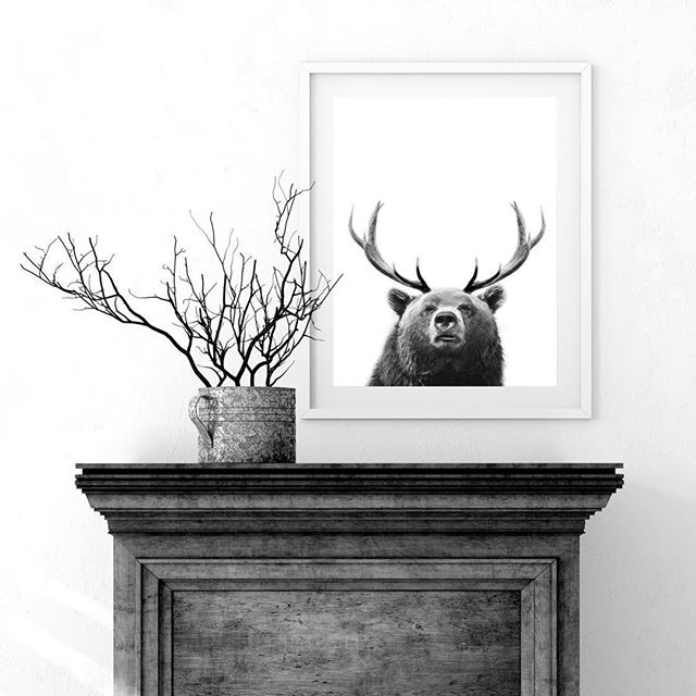 His name is Bjort⠀ Buy him now at calla.dk⠀ #calla #art #danishdesign #posters #poster #nordic #design #creative #interior #living