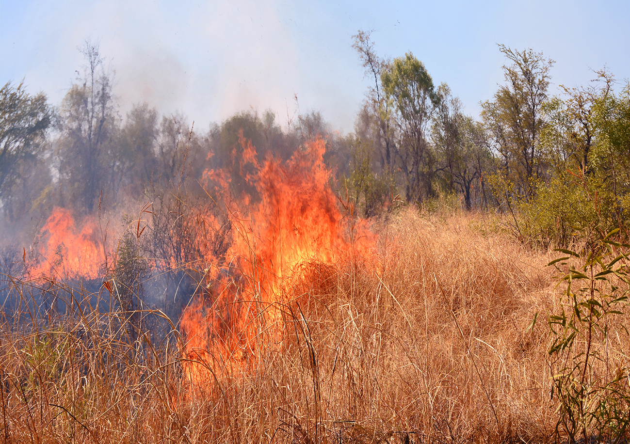© Photo : Aboriginal Signature. Bush Fire dans la région du Kimberley.