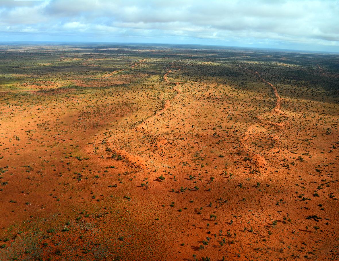 APY land, Australie centrale. Hiver 2014. © Photo : Aboriginal Signature • Estrangin Gallery