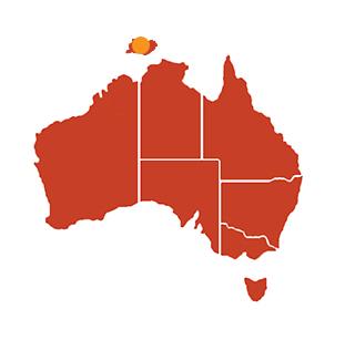 Munupi-Art-Aborigène