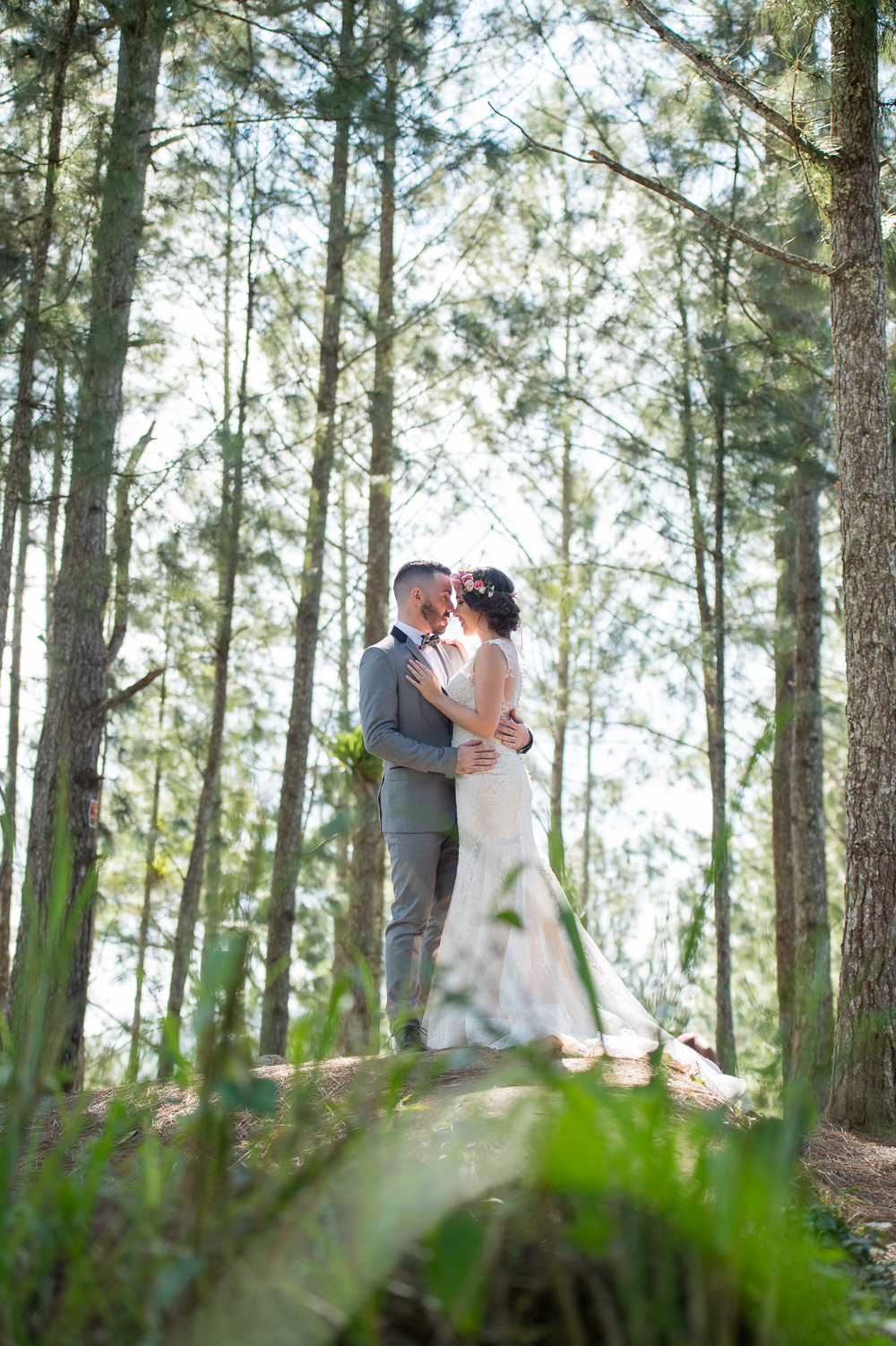 fotografia-bodas-puerto-rico-bosque-pinos-cayey-salinas-2.jpg