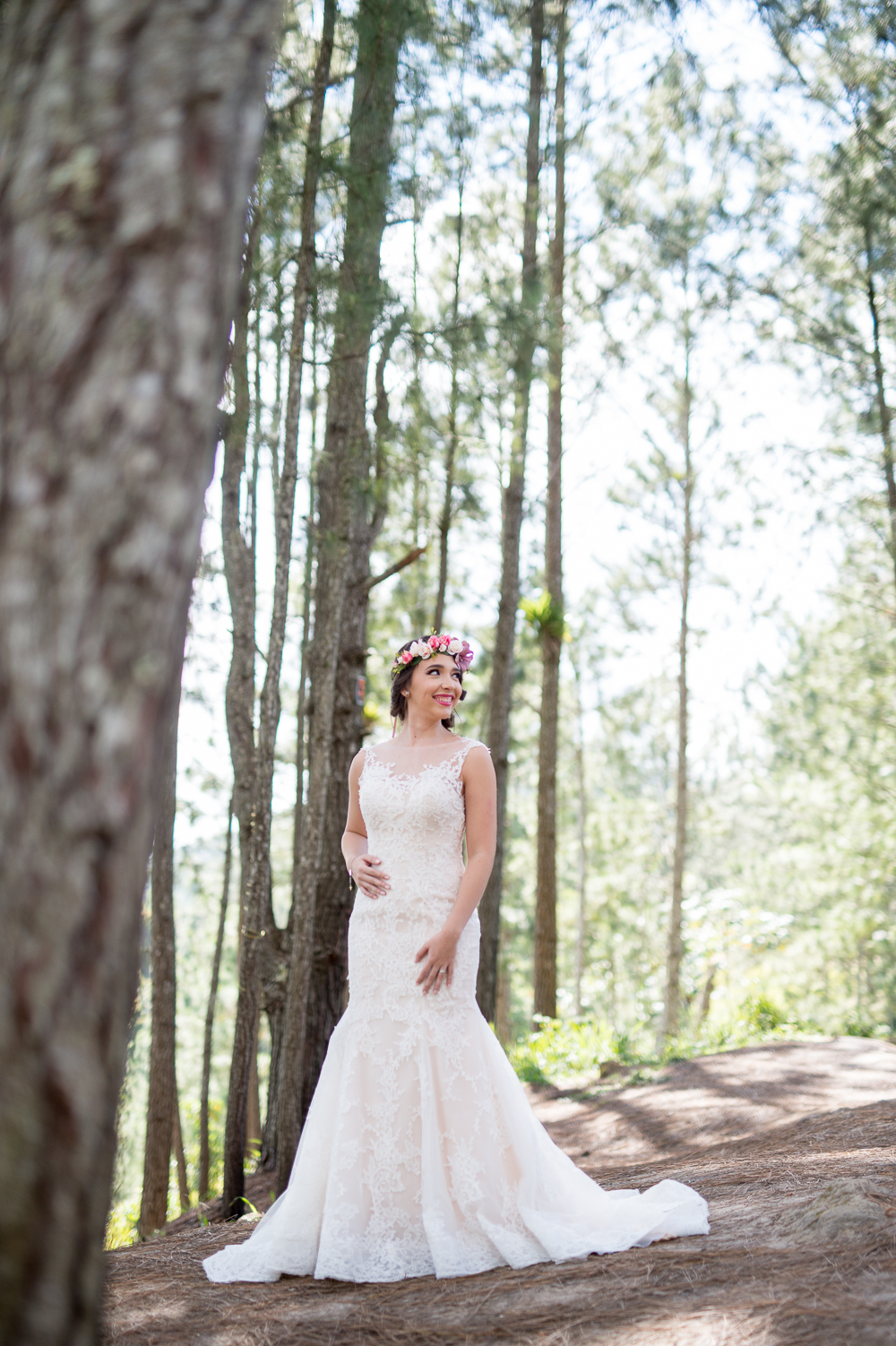 fotografia-bodas-puerto-rico-bosque-pinos-cayey-salinas-5.jpg