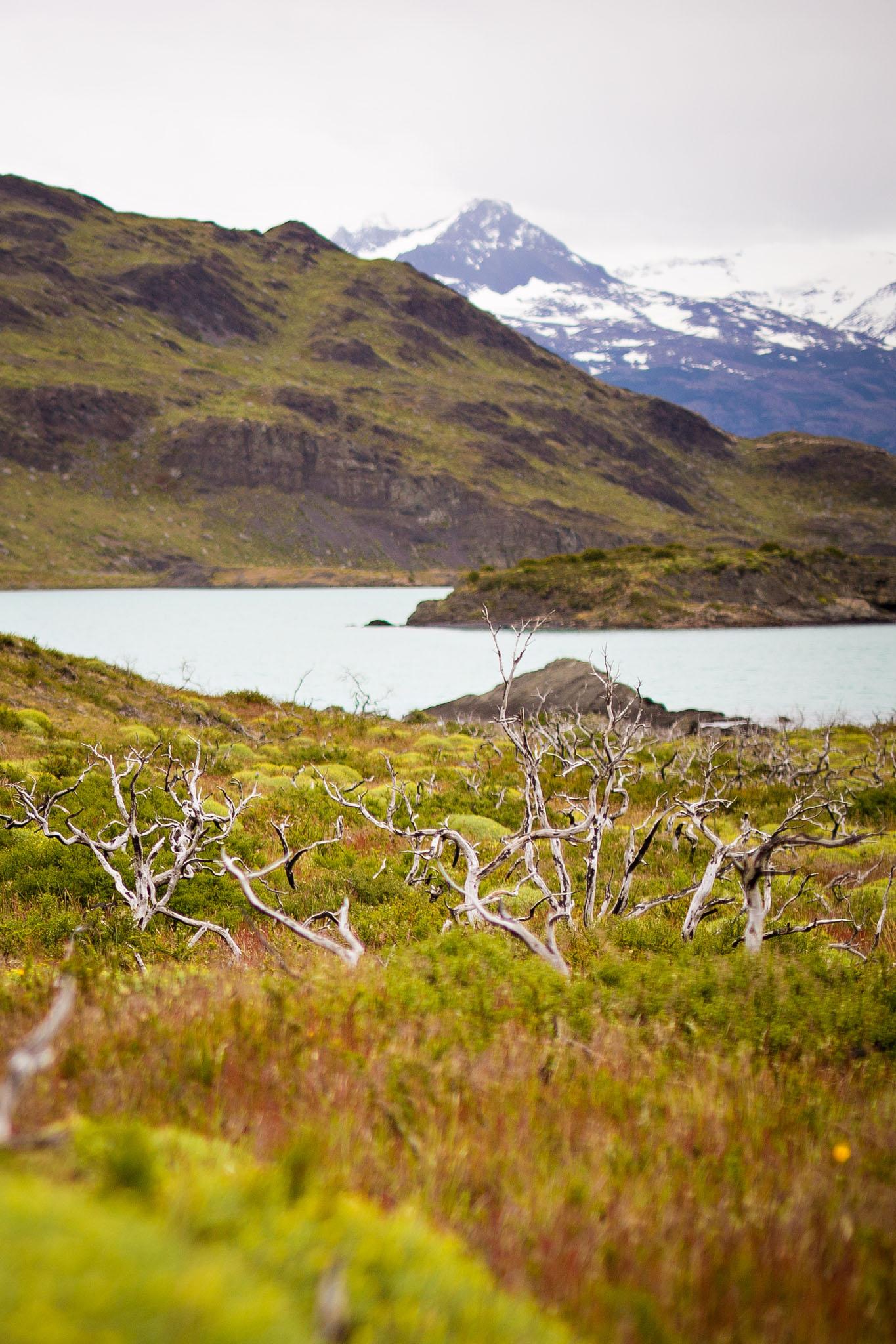 Wedding-Travellers-Overlanding-Destination-Wedding-Chile-Torres-del-Paine-fire-damage
