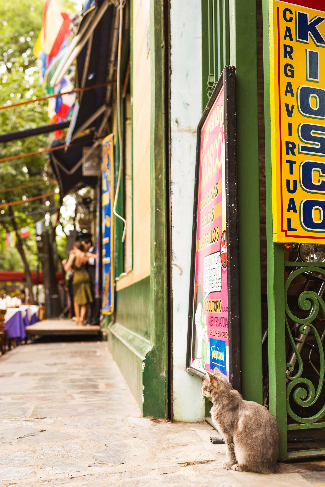 wedding-travellers-argentina-buenos-aires-la-boca-colorful-old-street-stray-cat-tango-dancer-watching