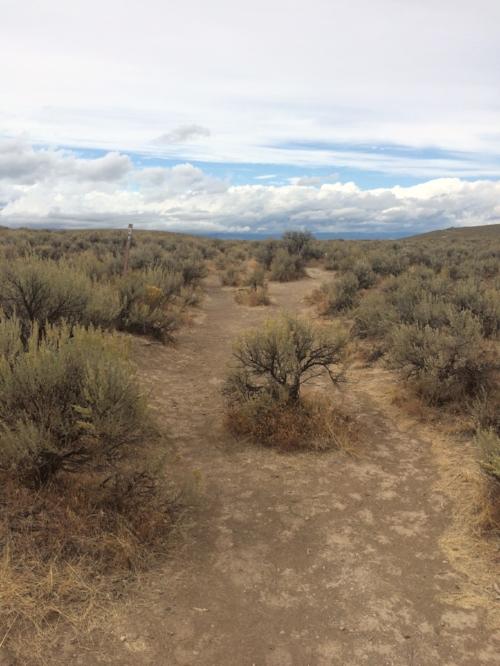 Historic Oregon Trail wagon ruts in Baker City, Oregon
