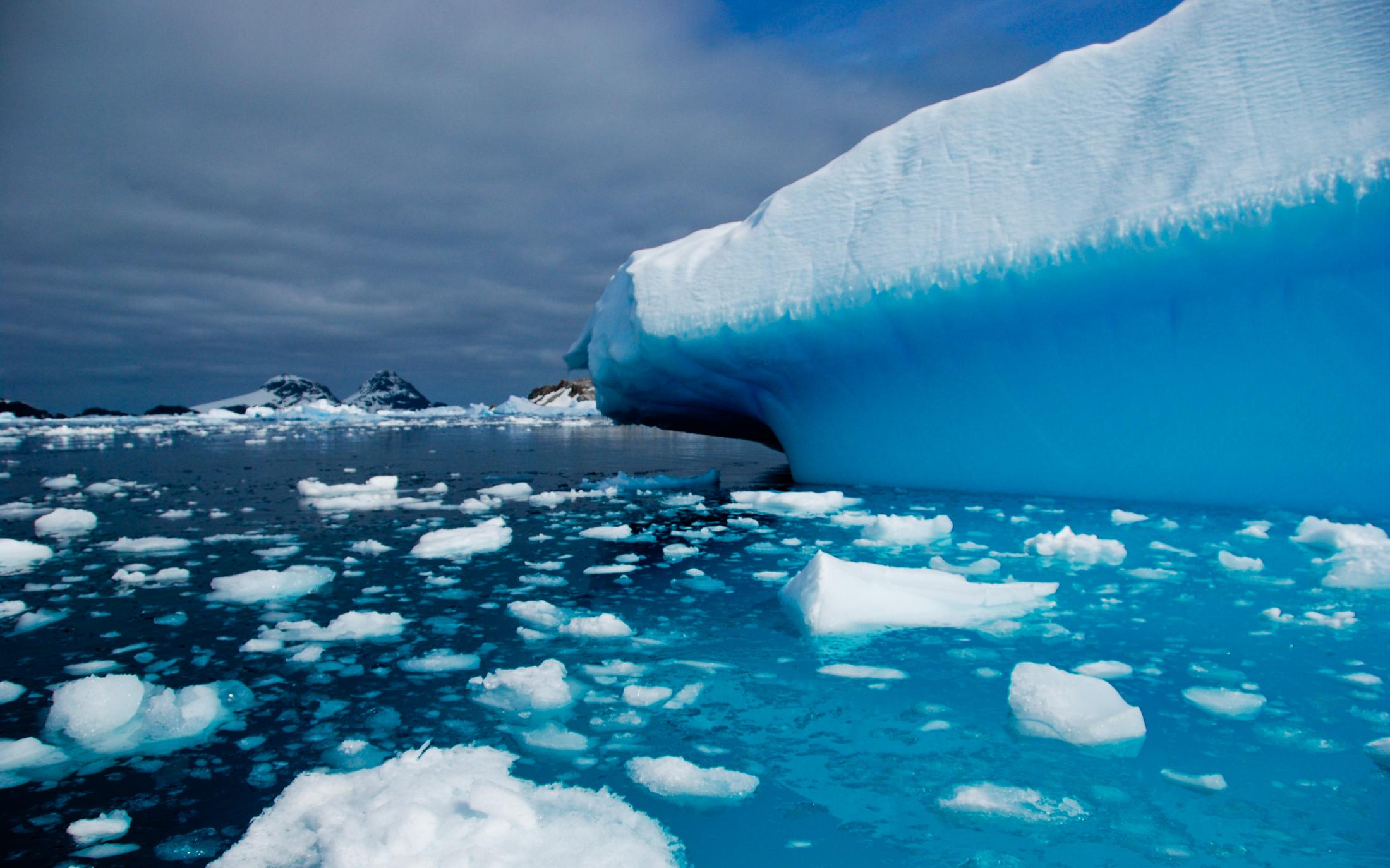 Julie-Jira_2015_PS_Antarctica-6.jpg