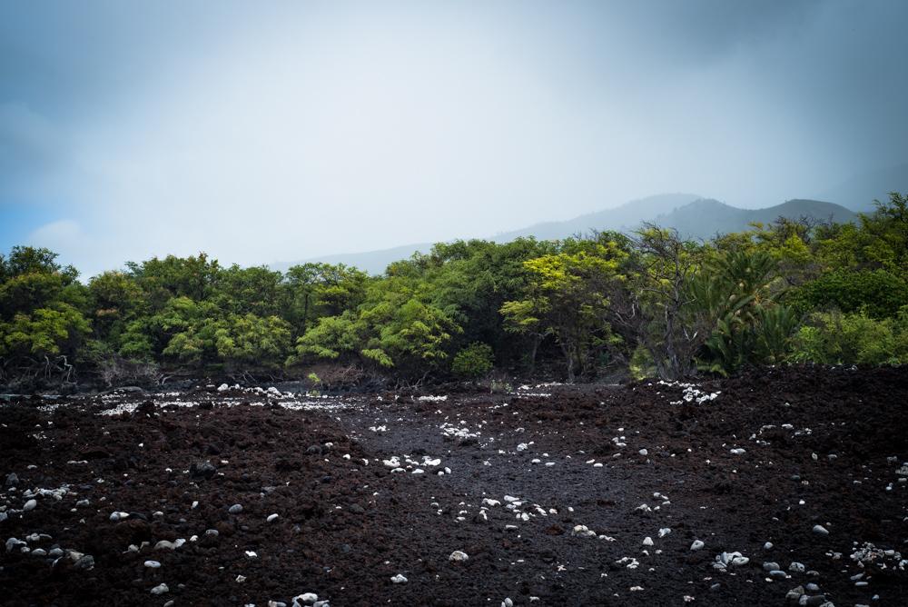 Julie-Jira_La-Perouse-Bay_Maui-8.jpg