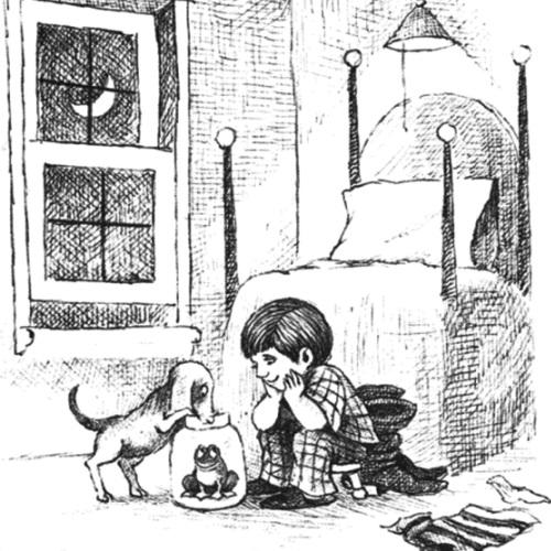 """En bild från bilderboken """"Frog, Where Are You?"""" av Mayer & Mayer (1969)"""