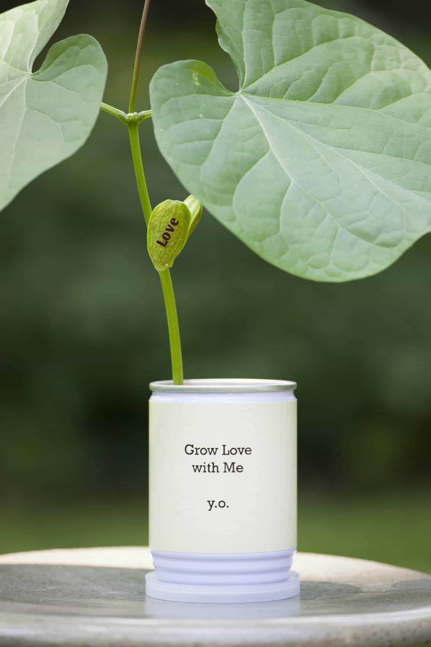 Grow-Love-With-Me.jpg