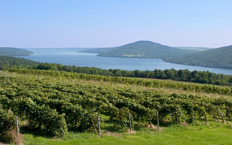 You'll Never Guess What State Has 2018's Top Wine Destination - Napa, Sonoma, and New York's Finger Lakes get a lot of attention when it comes to wine, but they aren't the only places in the U.S. to get an amazing vintage.A study released Tuesday by RewardExpert analyzed millions of ratings on CellarTracker to identify where the best-reviewed bottles of wine originated. According to the study, the top destination for wine this year is in the great state of Ohio. Coshocton, Ohio, to be exact.About two hours south of Cleveland and a bit more than an hour east of Columbus, Coshocton has nine wineries and vineyards that boast an average wine rating of 98 out of 100. They're basically wine gifted. According to RewardExpert, this lesser known wine haven has the most highly rated winery in the country: Heritage Vineyards.-- Travel & Leisure