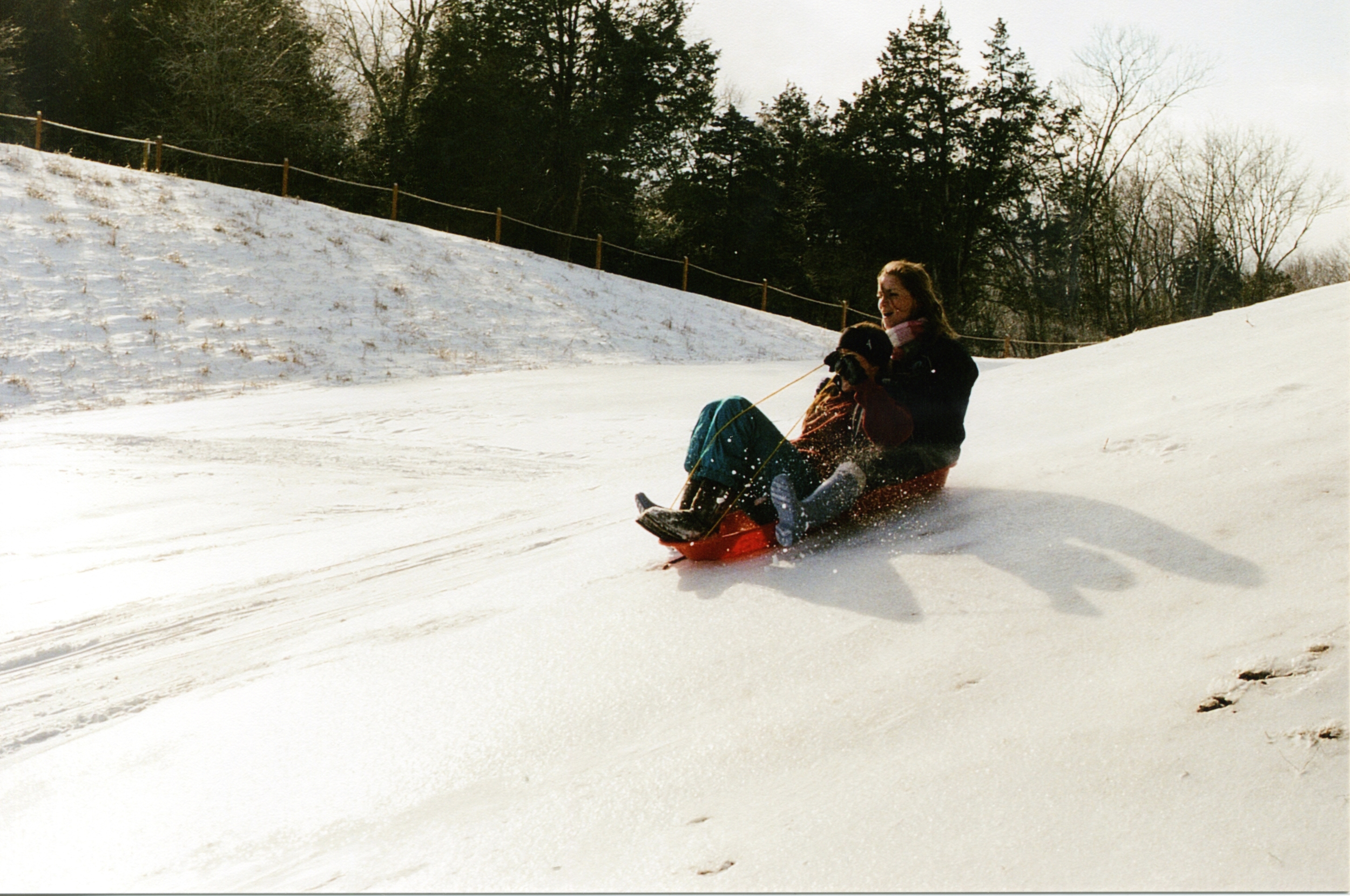 sled and shred014.jpg