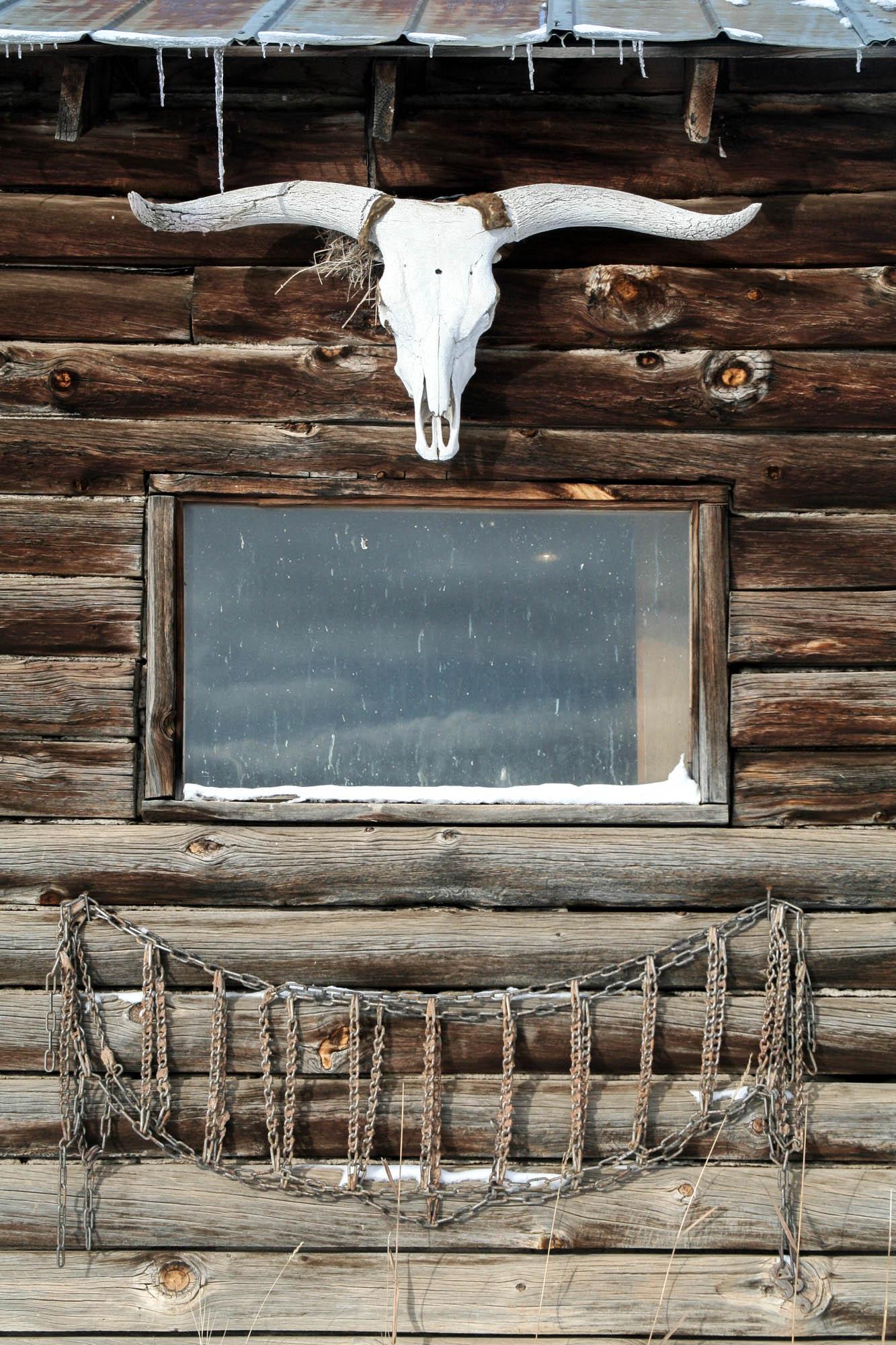 horsepack-1-5.jpg