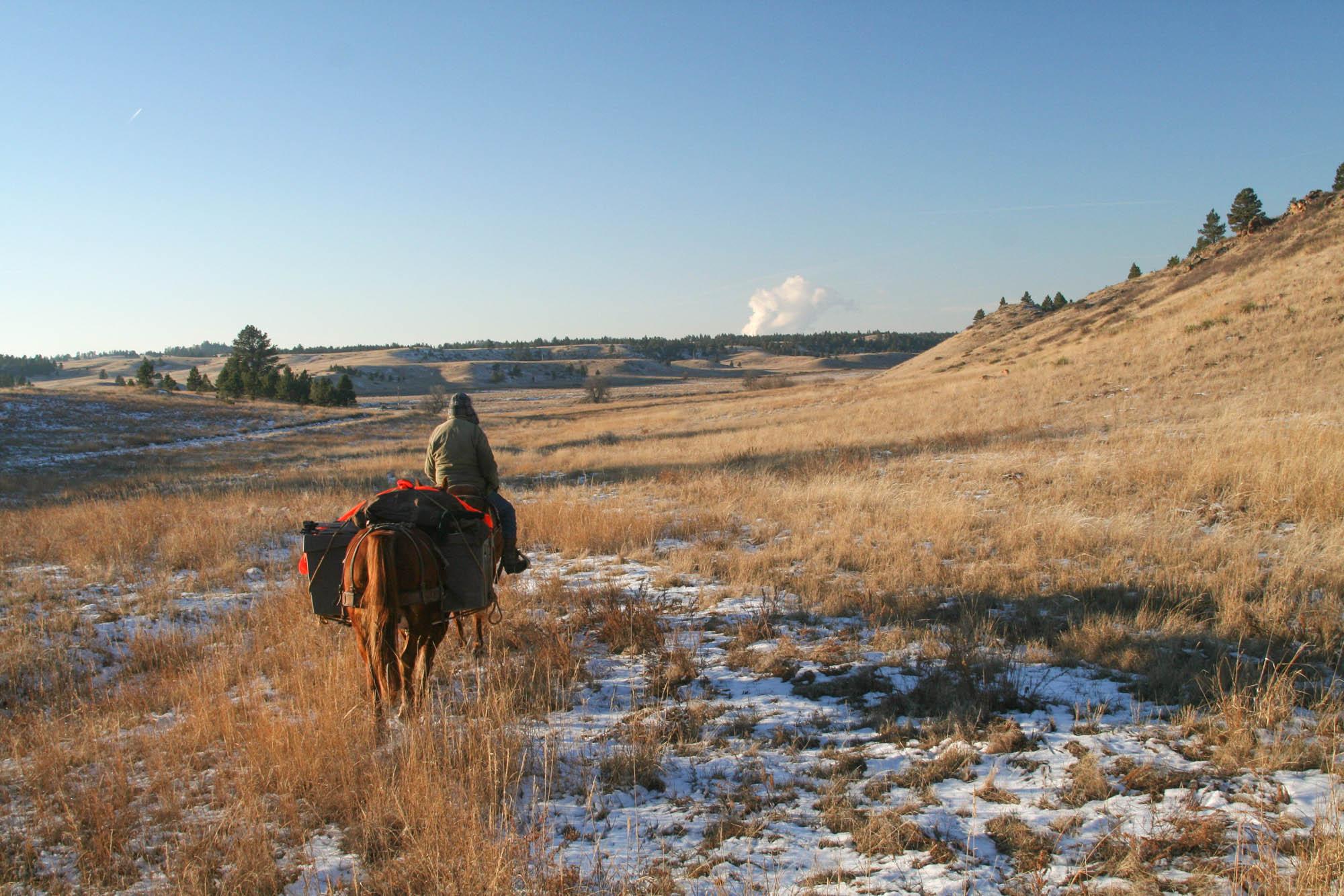 horsepack-64-28.jpg
