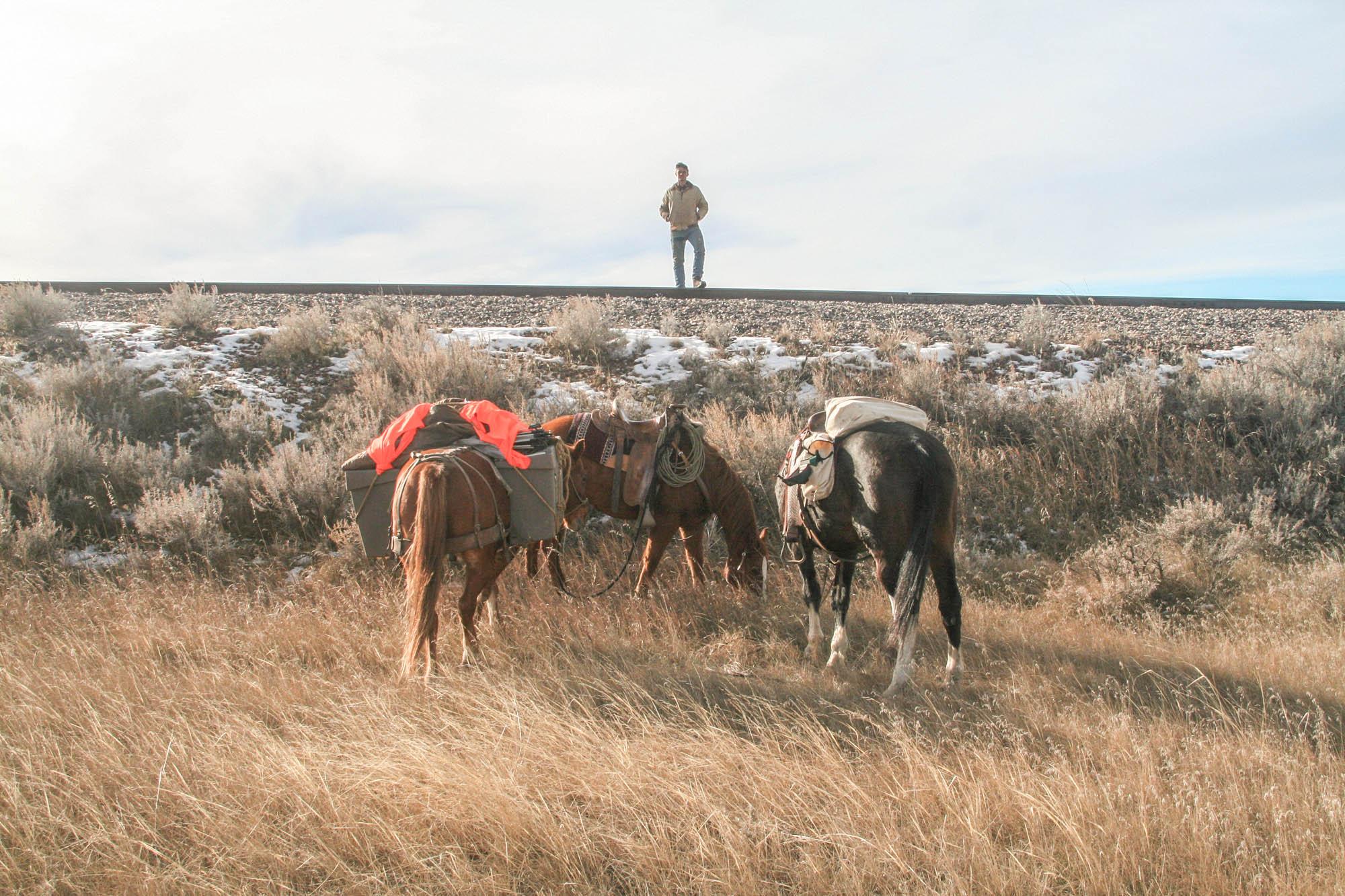 horsepack-64-64.jpg