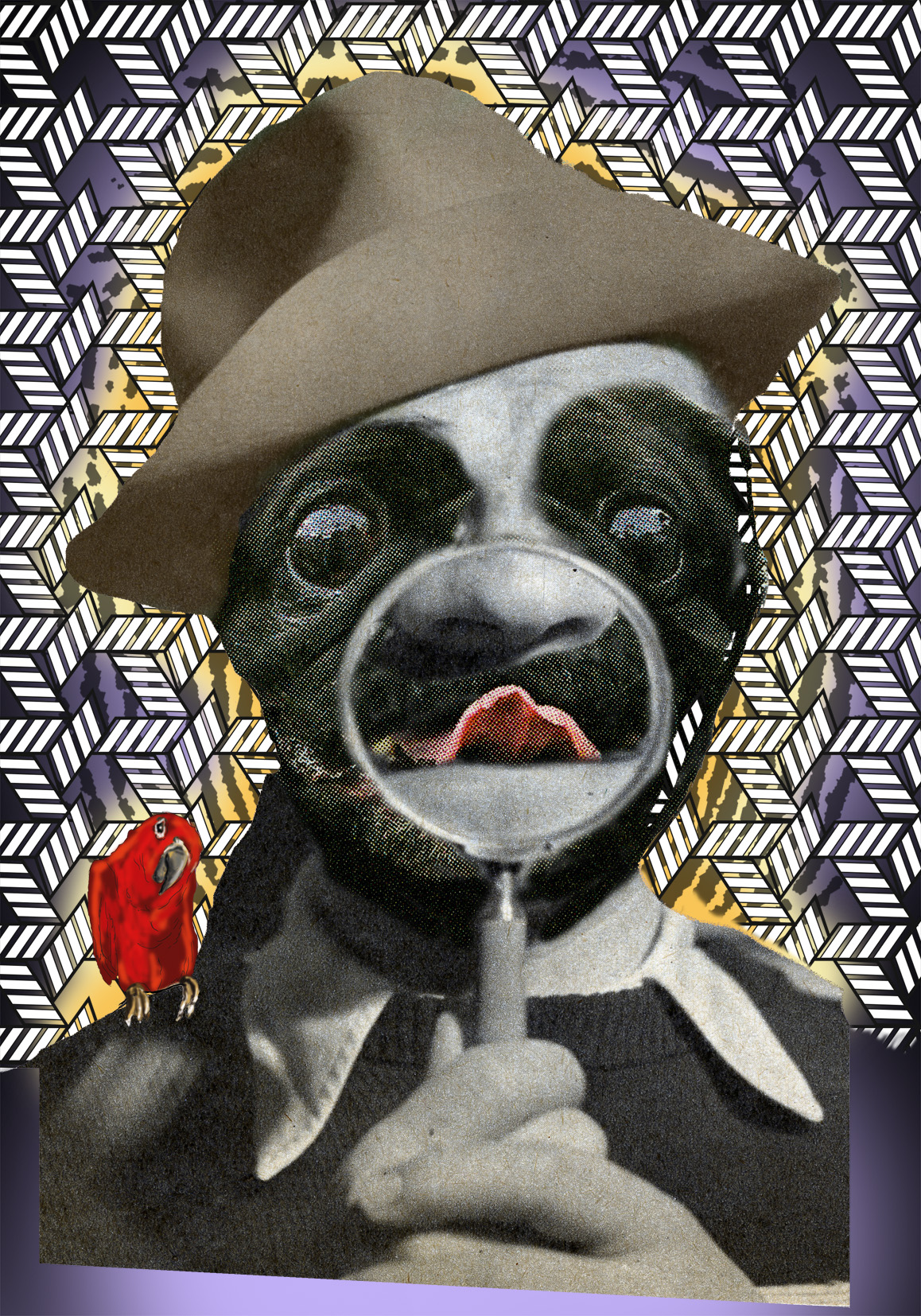 FUNNY DOG FEJS