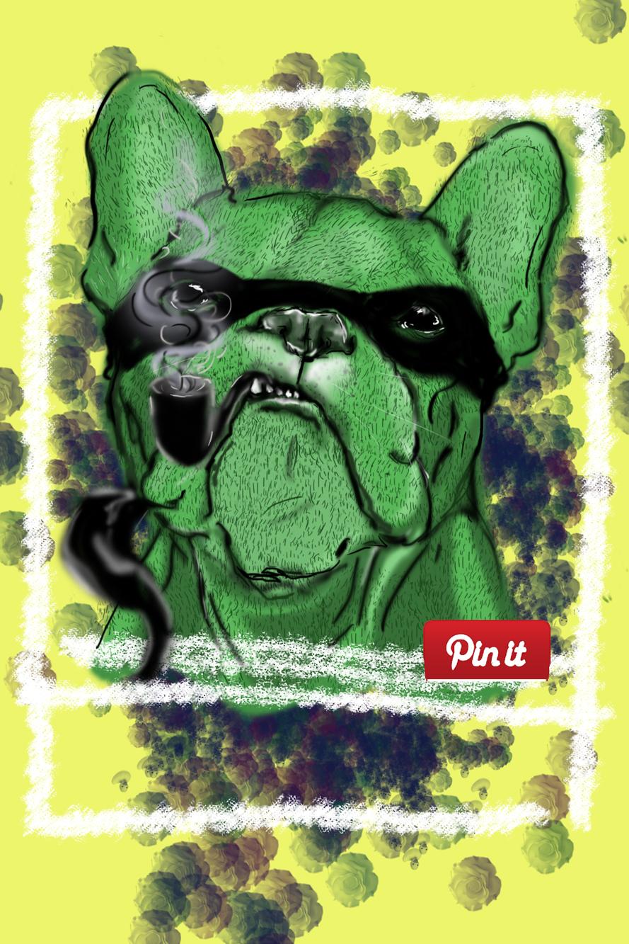 Hulk the dodgy dog.jpg