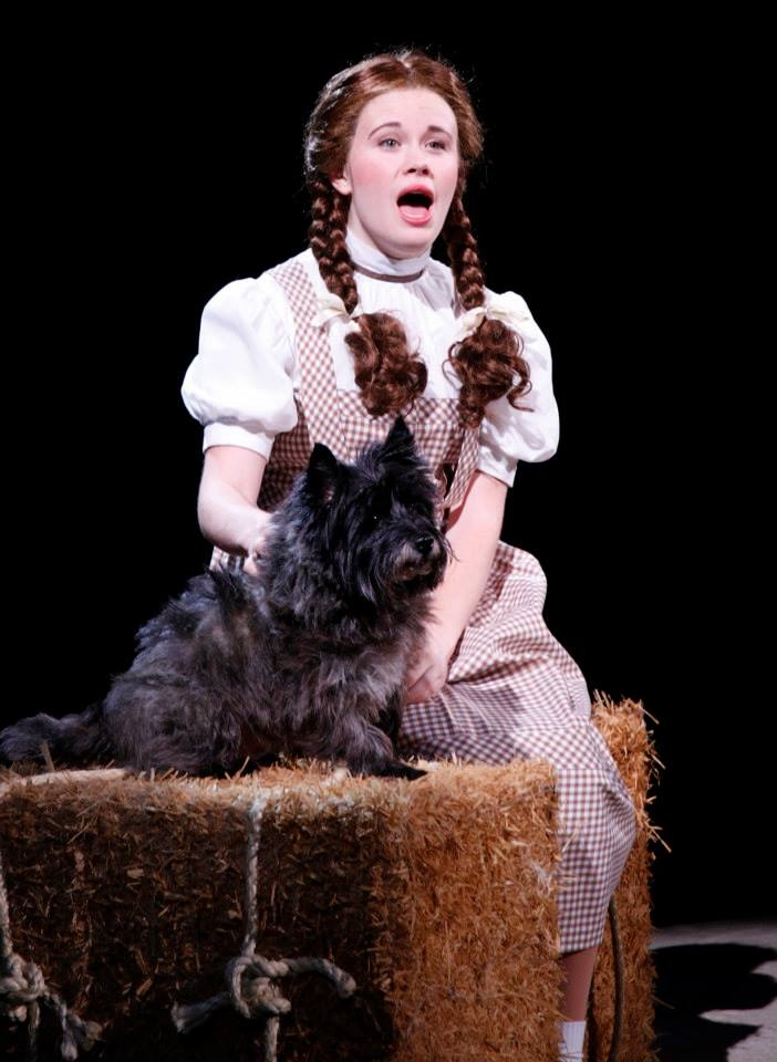 Danielle as Dorothy in North Shore Music Theatre's  The Wizard of Oz  accompanied by Nigel the rescue dog (2013).