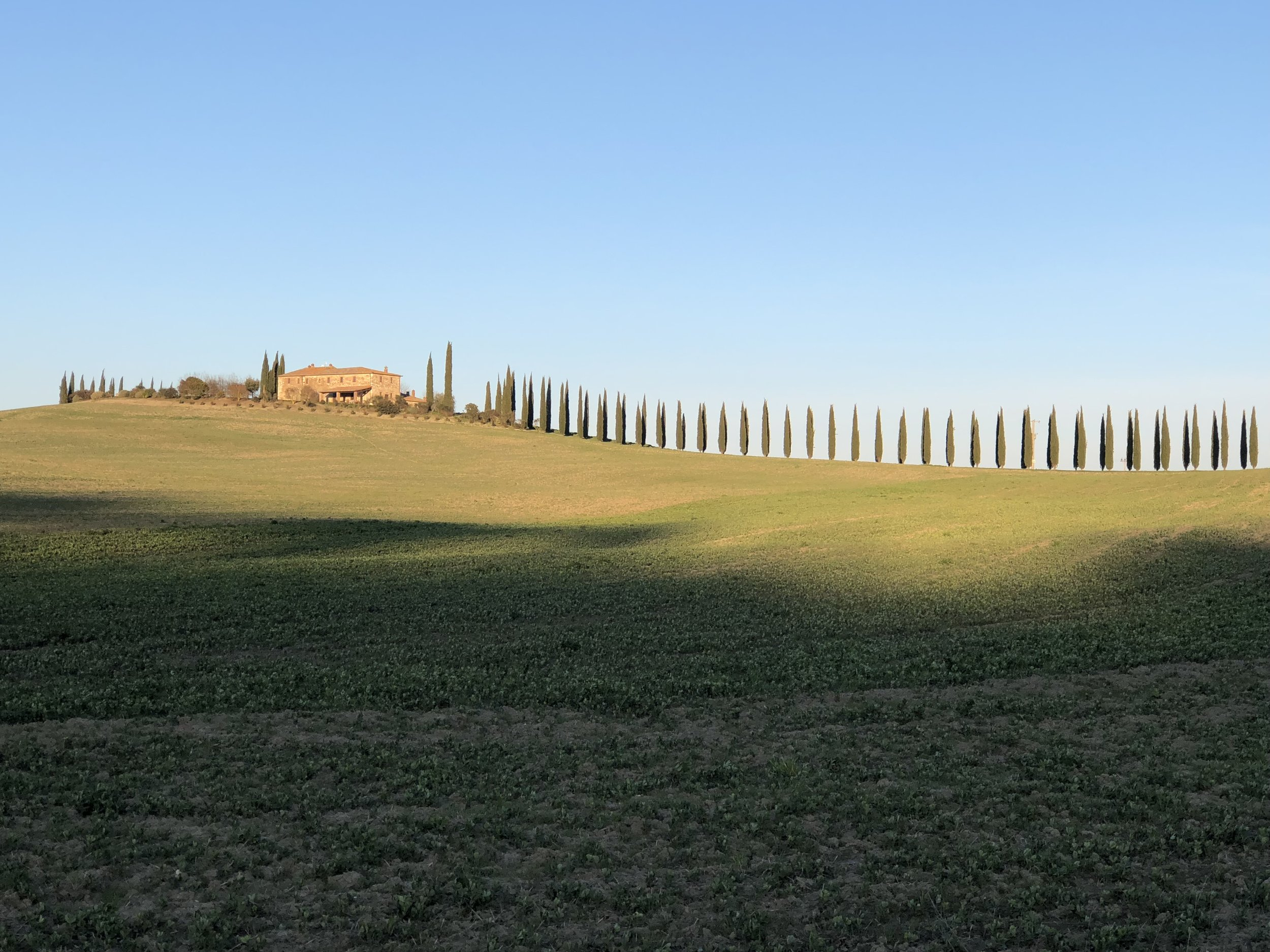 Snapshot from Val d'Orcia - famous for its rolling hills and cypress trees.  30 min drive from Chiusi.