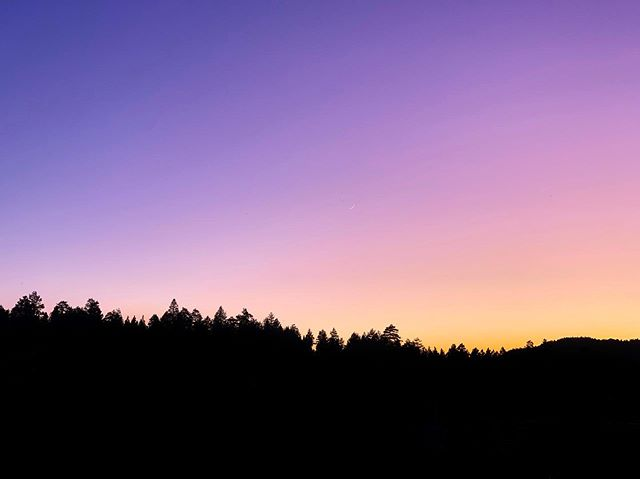 I was excited to witness an usually purple sunset this past weekend.  I read it's caused by pockets of sulfur in the stratosphere from recent volcanic eruptions 🌋🌅 #nerdalert 🤓 . . . . #volcanosunset #purplesky #purple #violet #sundown #sulfersky  #nature #treeline #landscapes #photography #gradient #yellow #silhouette #trees #insta #iphonesia #instapic #instagood #beautiful #sky #light #magichour
