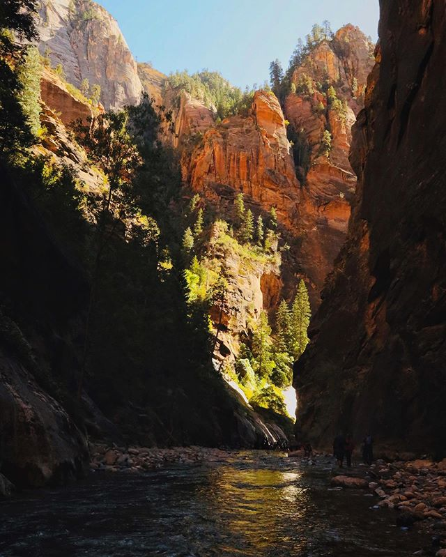 Monday . . . . #zion #outdoors #narrows #fitlife #hike #insta #nature #canyon #landscape #river #beautiful #pic j