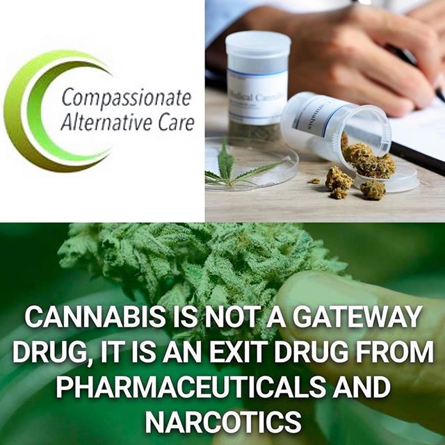 We're one day closer to #TheBashment happening this Saturday, September 14th, and today @JaxBashment is featuring our Title Sponsor - Compassionate Alternative Care!  @CompAltCare helps patients with the paperwork and examinations needed to get a legal Medical Marijuana Card here in Jacksonville. They are a family owned, Jacksonville based business that cares about our community and provides a way to ensure we have access to alternative health and wellness care through a streamlined process and affordable visits so you can receive your MMCard as soon as possible!  Visit their website at www.compaltcare.com and be sure to stop by their table at #TheBashment to get more information and an appointment scheduled!  We look forward to seeing you all this weekend! Save the date and bring your crew!  #CompAltCare #medicalmarijuana #mmcard #greencard #wellness #health #alternativemedicine #duval #healthcare #shoplocal #familyowned #igersjax #thingstodoinjax #weekend #selfcare #education #GoingDownInDuval #TheCulture #JaxBashment #green