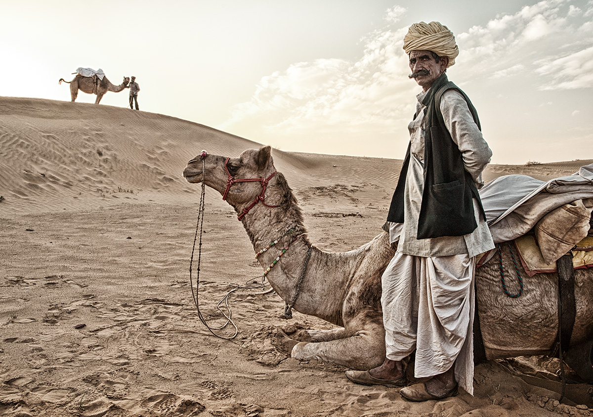 The twin camels