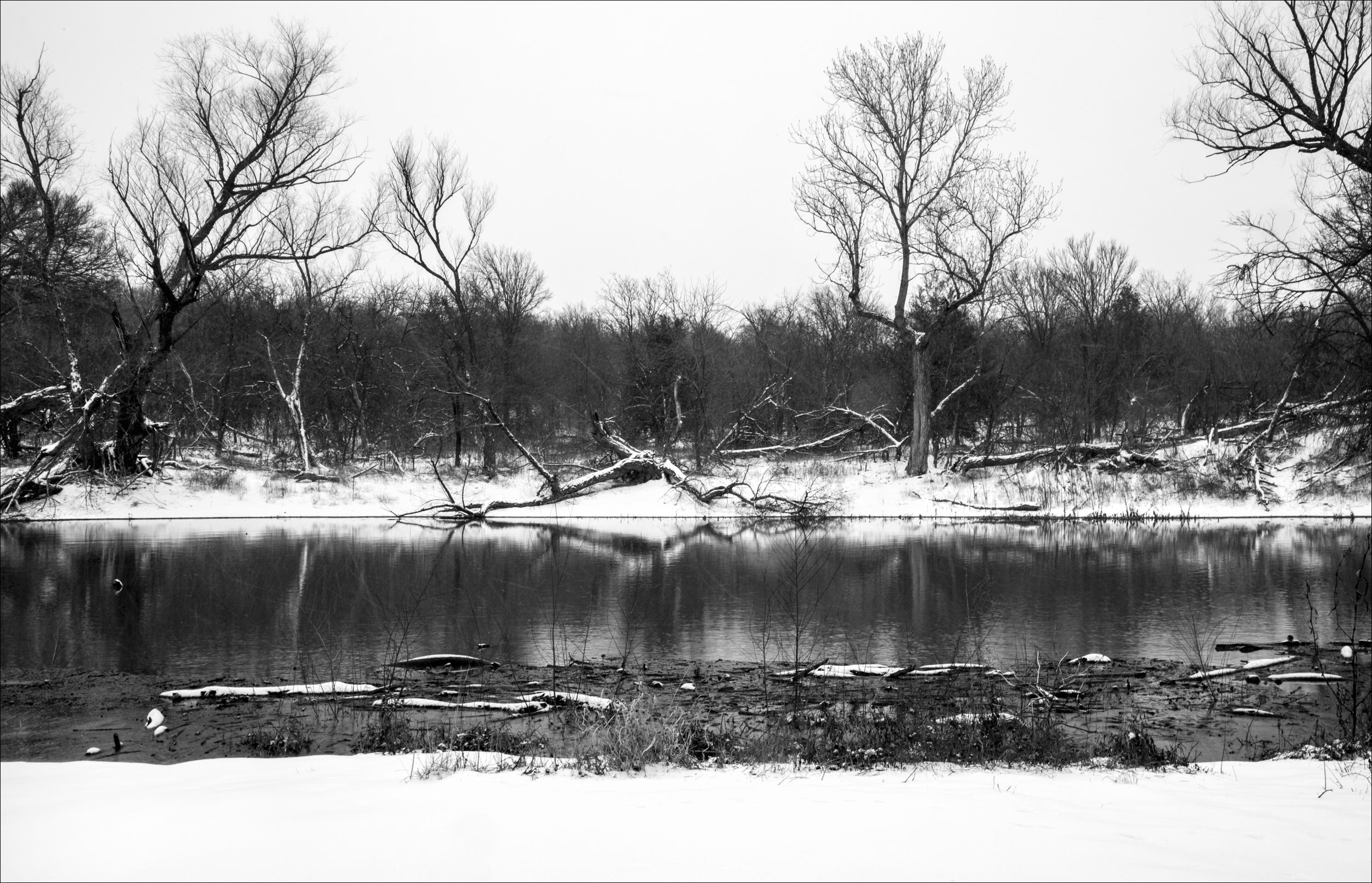Pond Straight On.jpg