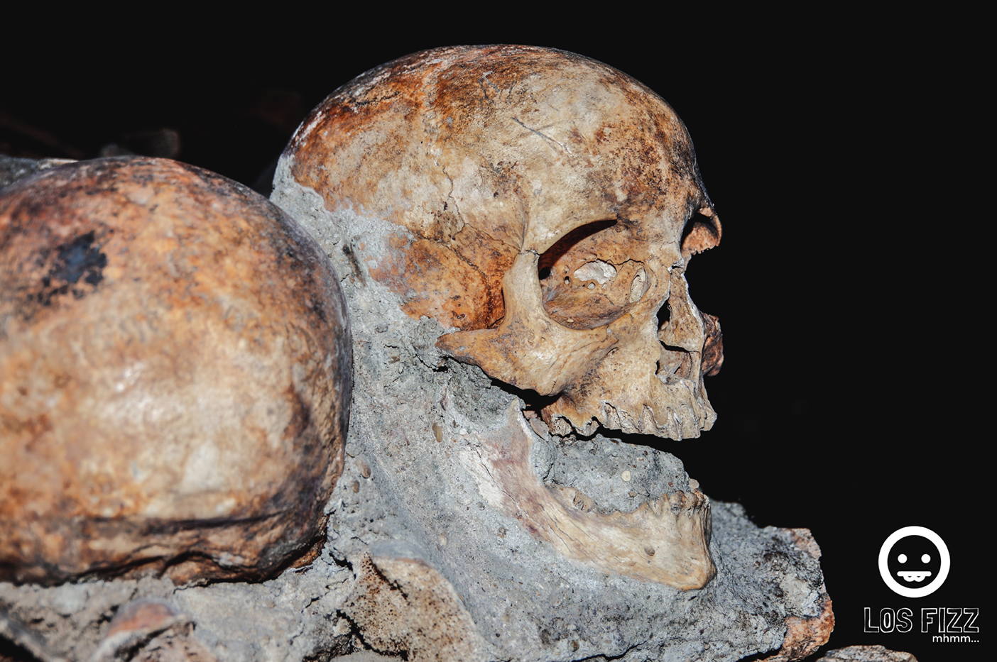 Skull from the catacombs in Paris