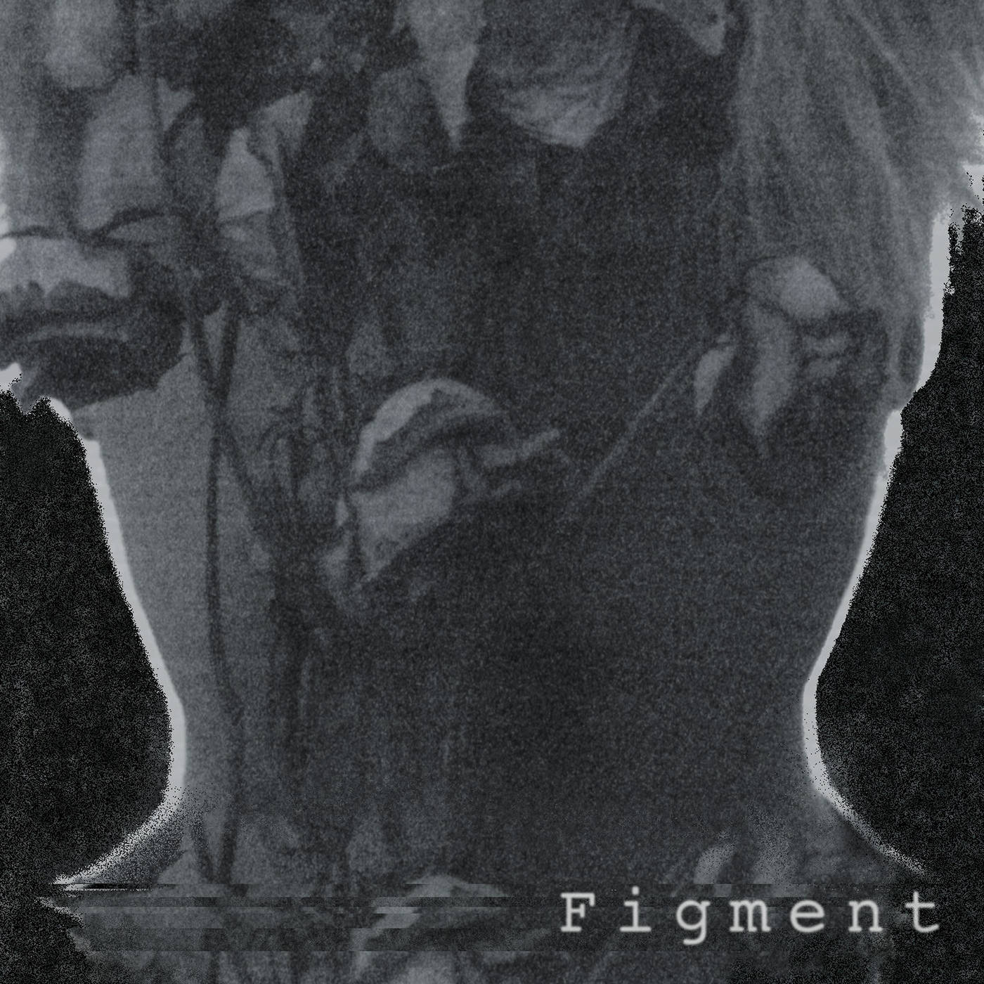 Figment Cover.JPG
