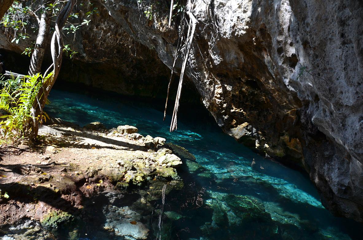 cenote2.jpg