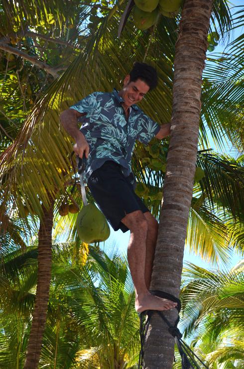 coconut Juan.jpg