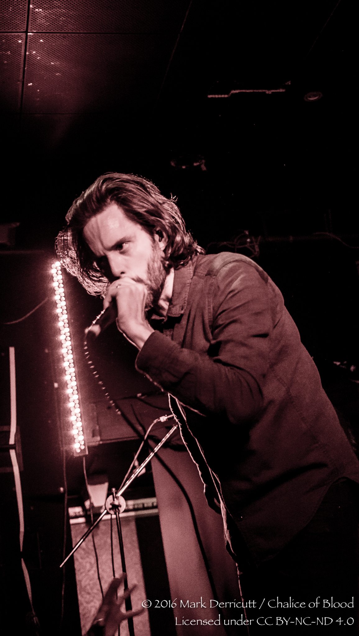 Between The Buried And Me - 40.jpg
