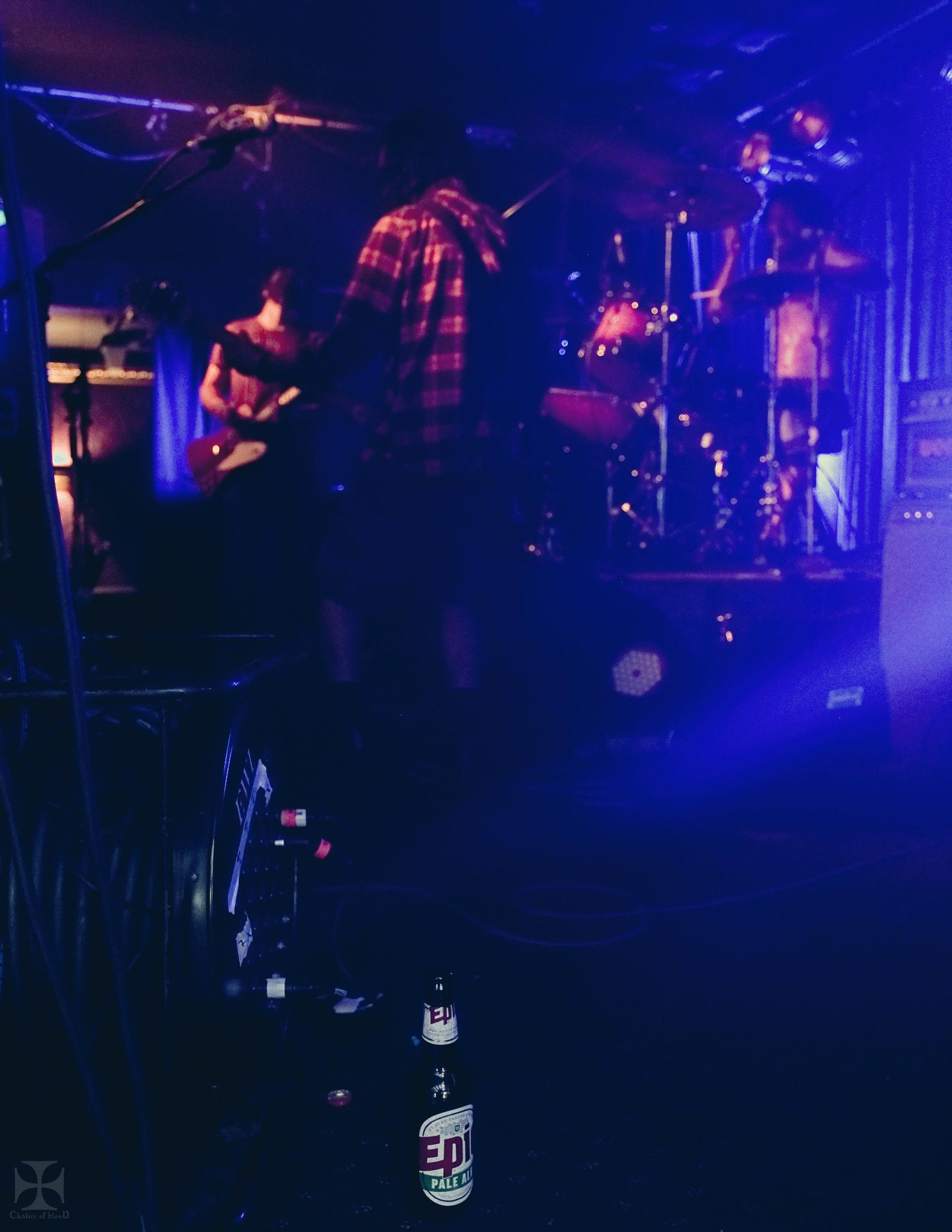2018.01 A Doubtful Sound - 0062-Exposure.jpg