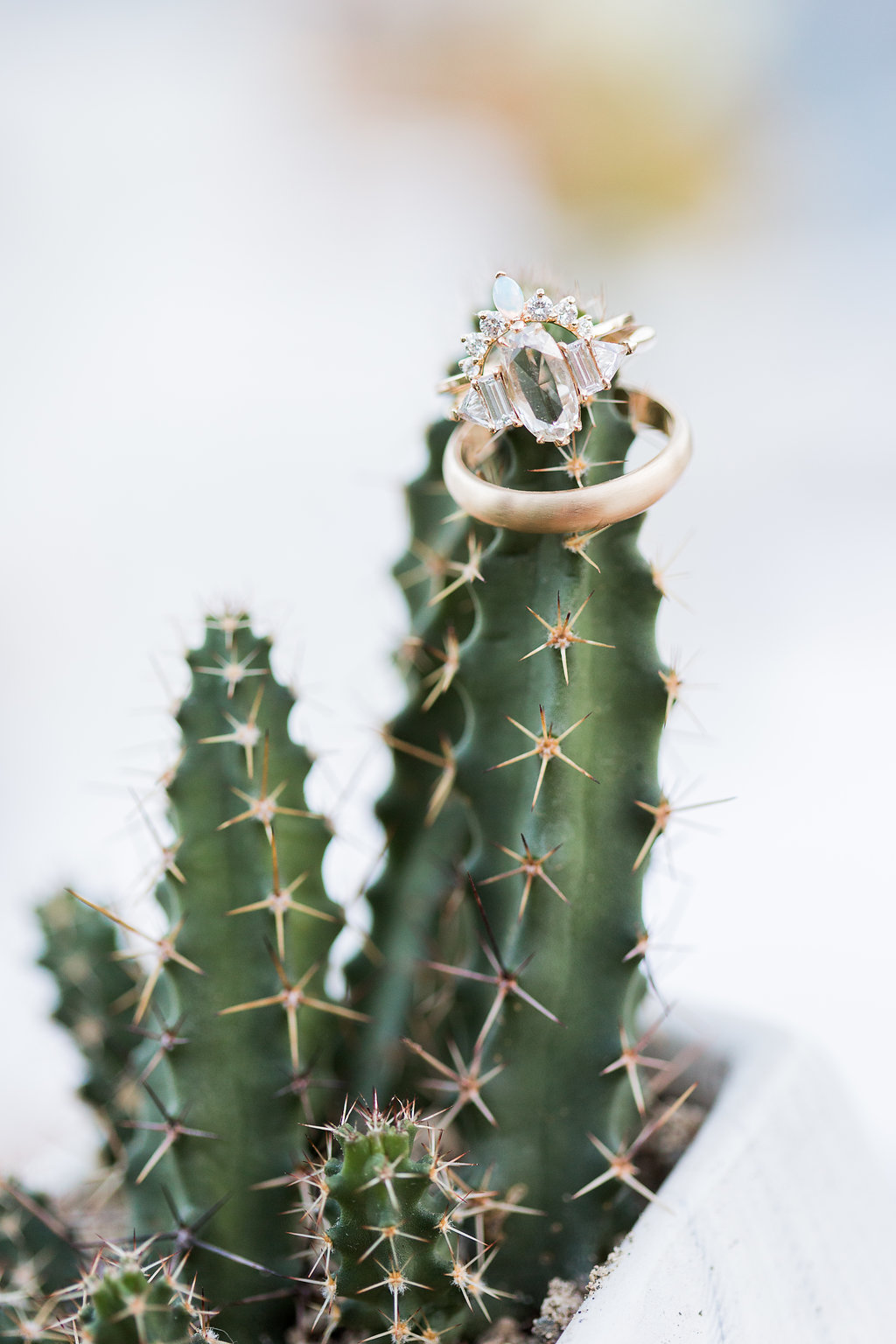 MeghanJordan-Wedding-VeraInAugust-275.jpg