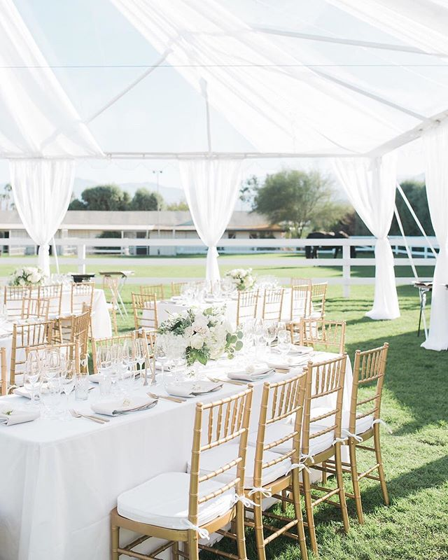 Can we have sparkly gold chairs at every wedding?! The dreamiest details ✨ Photography: @marisabellephotography Design and Coordination @detailsdarling  Flowers: @thebloomoftime  Rentals: @sigpartyrentals  Linens: @latavolalinen  Catering & Cake: The Butler Did It Catering  Videography: @bydesignfilms