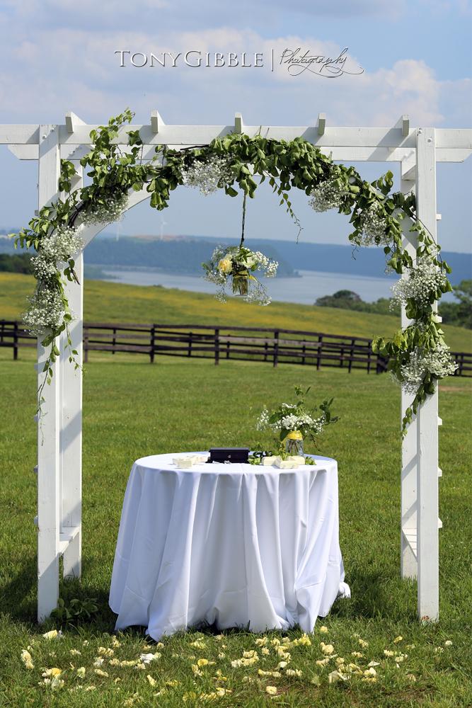WEB - Fritzpatrick Wedding Edits (79).jpg