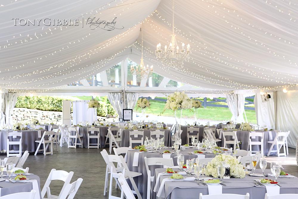 WEB - Bucher Wedding Edits (178).jpg