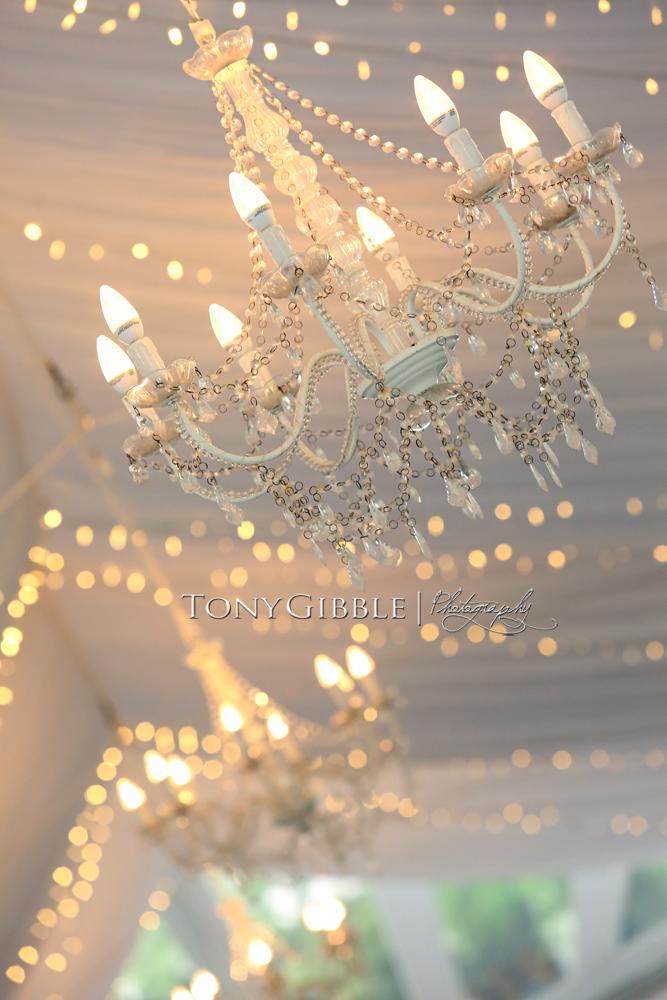 WEB - Fultz Wedding Edits (154).jpg