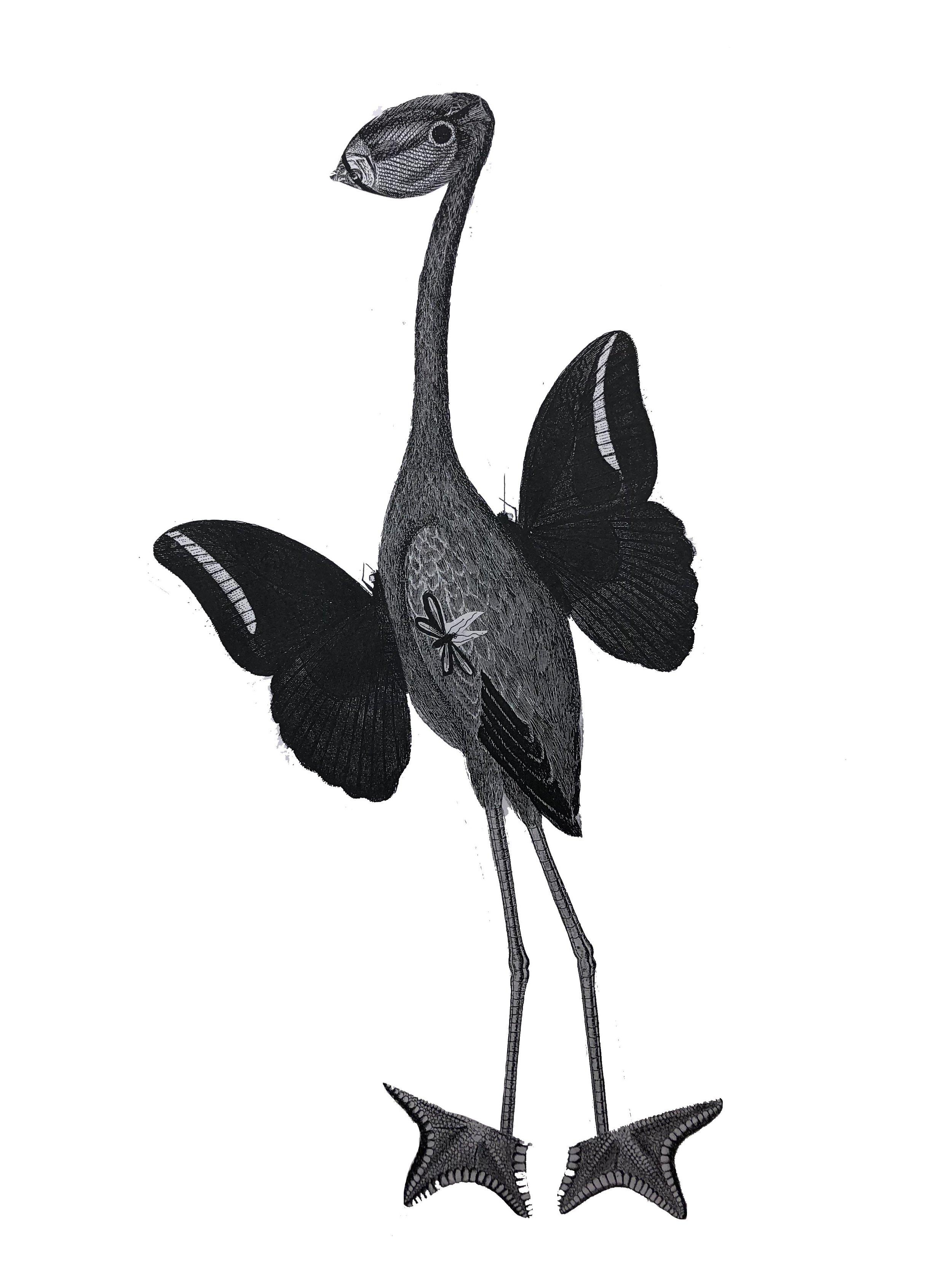 CCC_bird_collage puppet.jpg