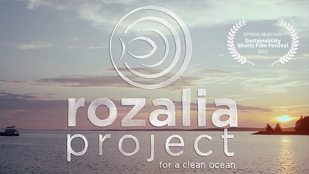 Rozalia Project  Director: Alex Levin
