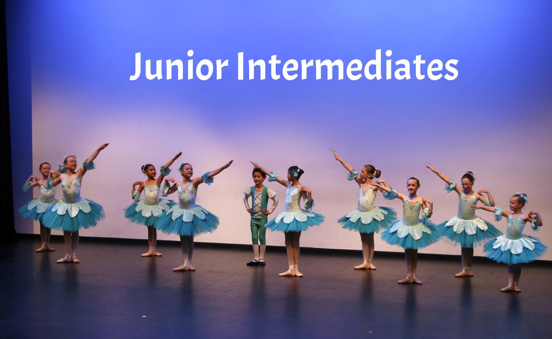 Junior Intermediates concert website adv.png